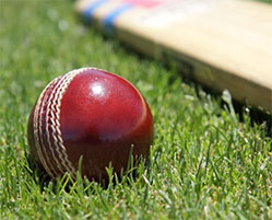 Initiation au cricket